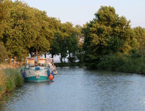 Optez pour le slow tourisme : visitez le Canal du Midi en péniche