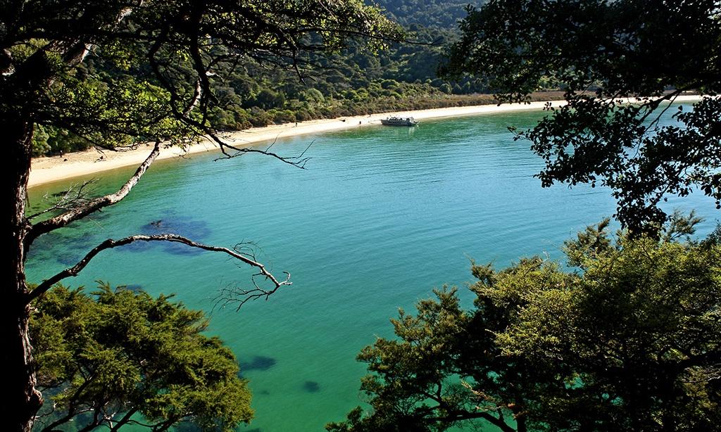 Road Trip en Nouvelle Zélande : De Blenheim à Abel Tasman…