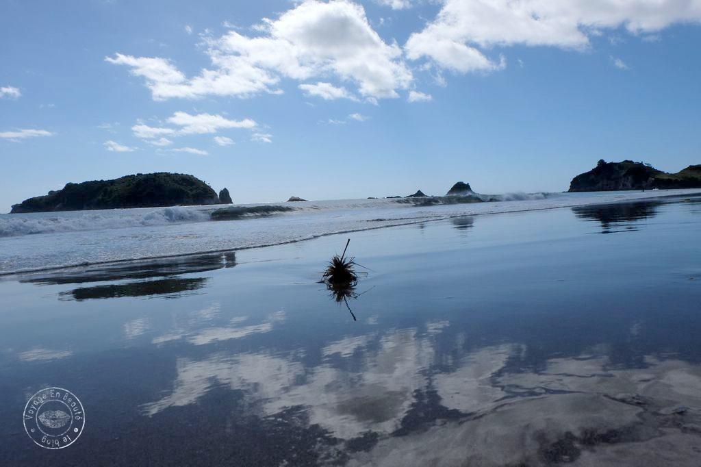 Nouvelle Zélande : la péninsule de Coromandel…