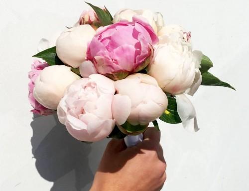 Dites le avec des fleurs… Concours !