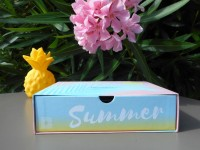 birchbox-summer-vibes-juillet-2017-spoiler-contenu-promo.jpg