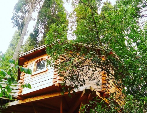 Insolite : j'ai dormi dans une cabane dans les bois à Carcassonne !