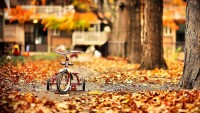 bilan-mois-octobre-2017-blog-voyage-beaute