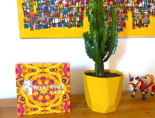 Je découvre l'Ayruveda avec la Biotyfull Box de Septembre !