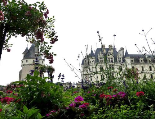 Visiter le château de Chenonceau autrement…