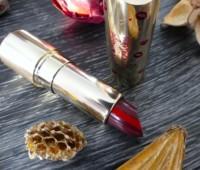 joli-rouge-gradation-clarins-plum-avis-test-swatch
