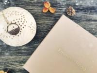promo-box-bijou-emma-chloe-avis-test-fevrier-2019