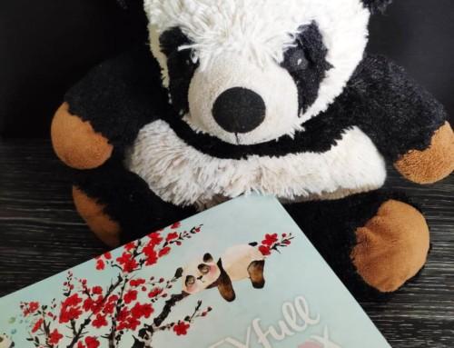 La Biotyfull Box Panda routine asiatique – Janvier 2020