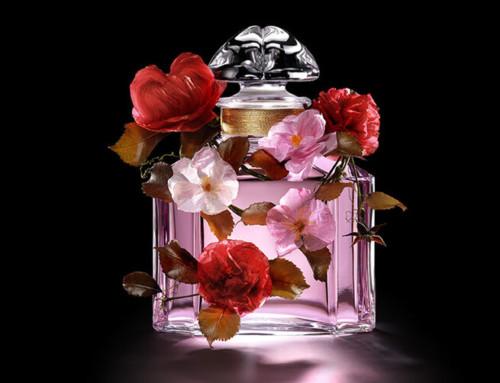 Les nouveautés parfums du printemps + concours !
